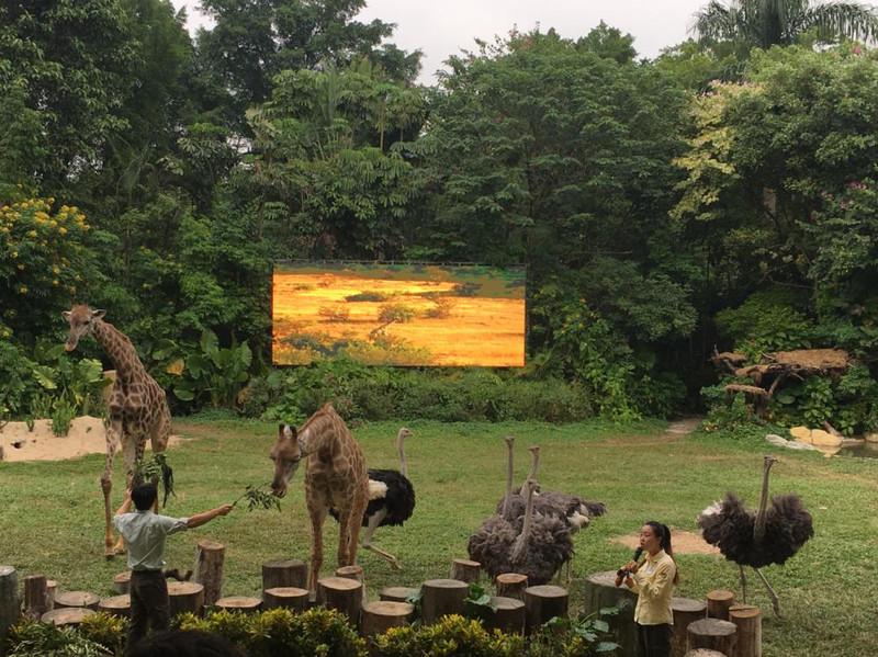 河北衡水出发——广州长隆野生动物园——大马戏